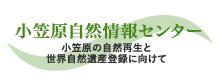 小笠原自然情報センター 小笠原の自然再生と世界遺産登録に向けて
