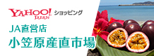 yahoo!ショッピング JA直営店 小笠原産直市場