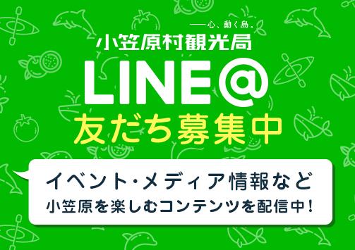 LINE@ 友だち募集中