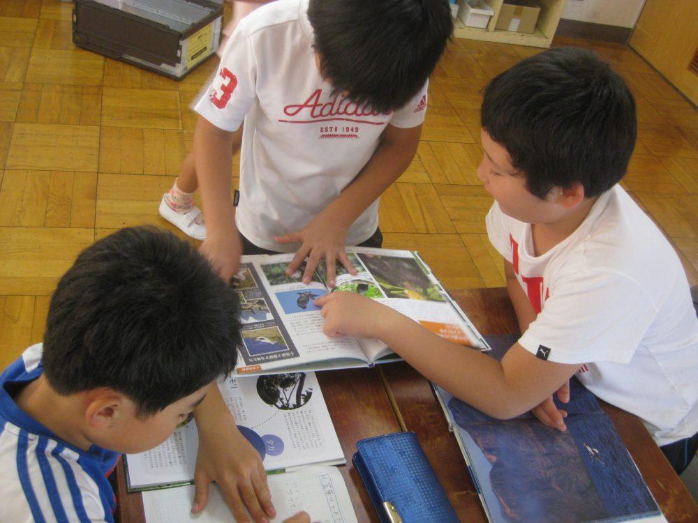 小笠原を学ぶ子供たち