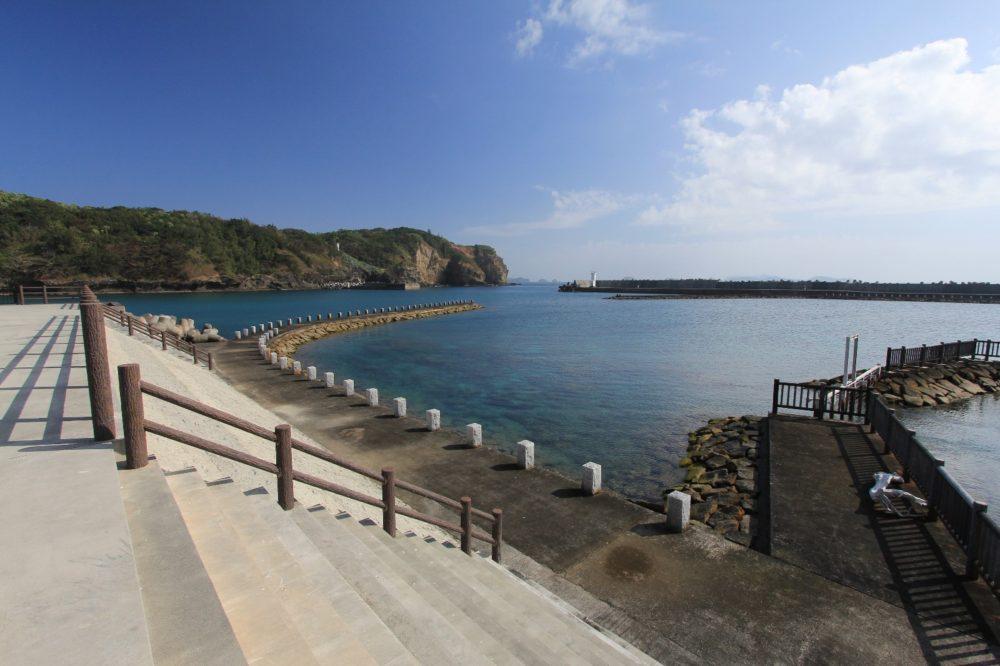脇浜アオウミガメ人工孵化場付近