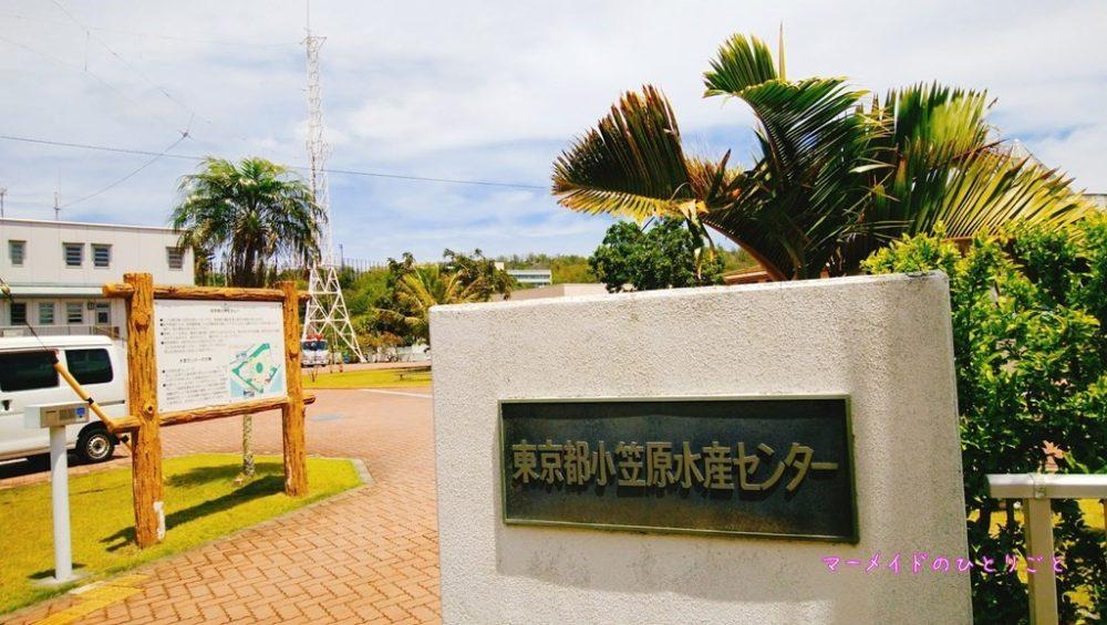 水産センター01