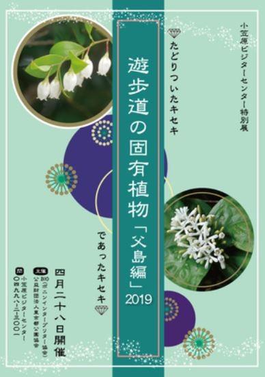 遊歩道の固有植物ポスター