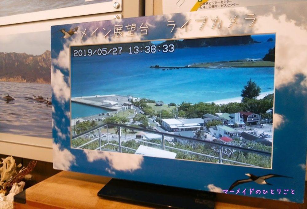 大神山展望台ライブカメラ
