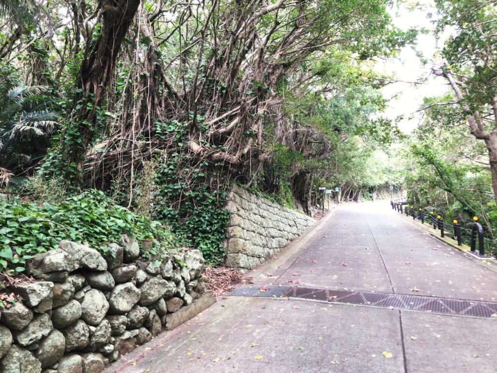 写真J 北村小学校近くの道