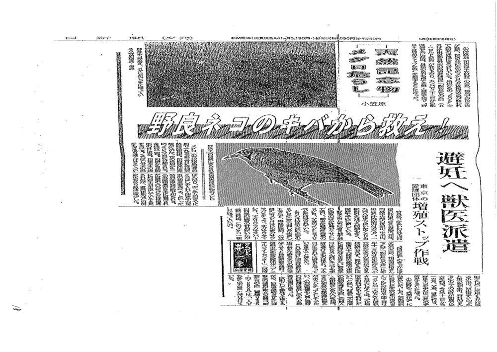 メグロ新聞
