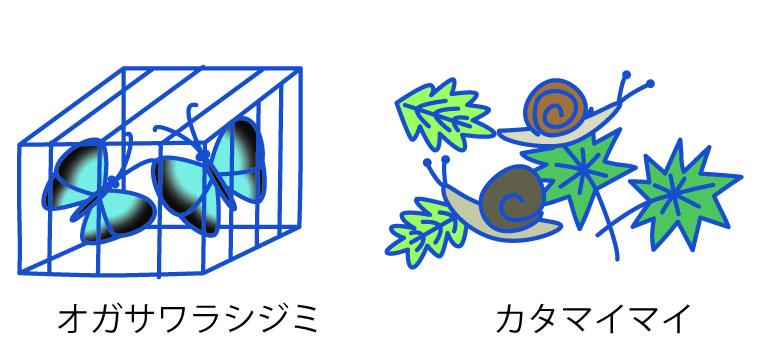 他動物-03-03
